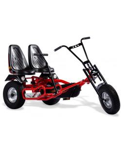GoKart, Gokart Rider 2 F professional