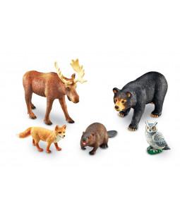 Jumbo skov dyr