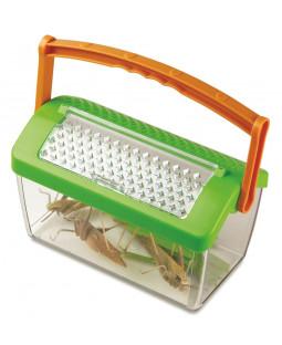 Insekthus