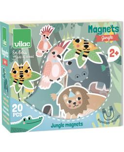 Magneter - Jungle